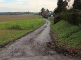 """""""Evolutionspfad"""" kommt nach Leimen – FDP Antrag im Rat erfolgreich"""